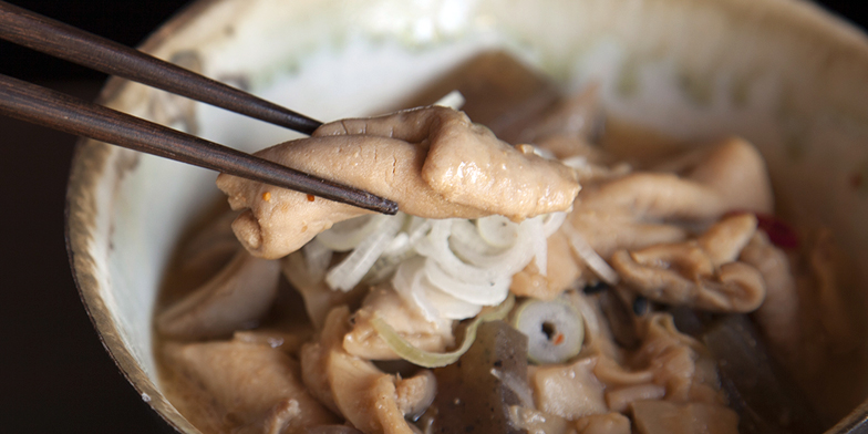 和豚もちぶた モツ煮